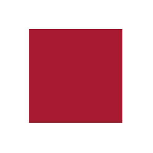 Cranberry Solid 12x12 Cardstock Paper Pack (10/pk)