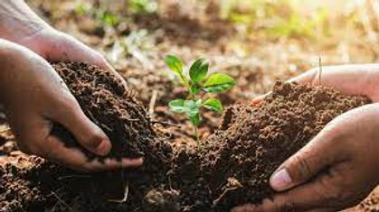 soil health.jpg