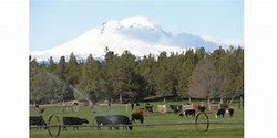 Ranch operation conservation plans