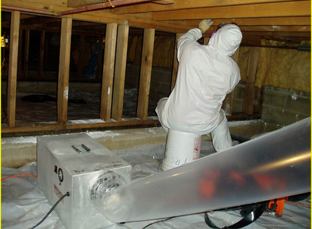 Does Your Home Have Mold?