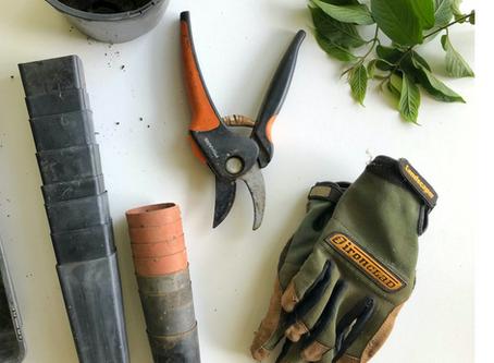 Summer Maintenance Checklist
