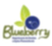 Blueberry Eventos