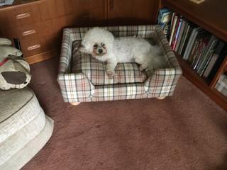 custom-covered-dog-bed.jpeg