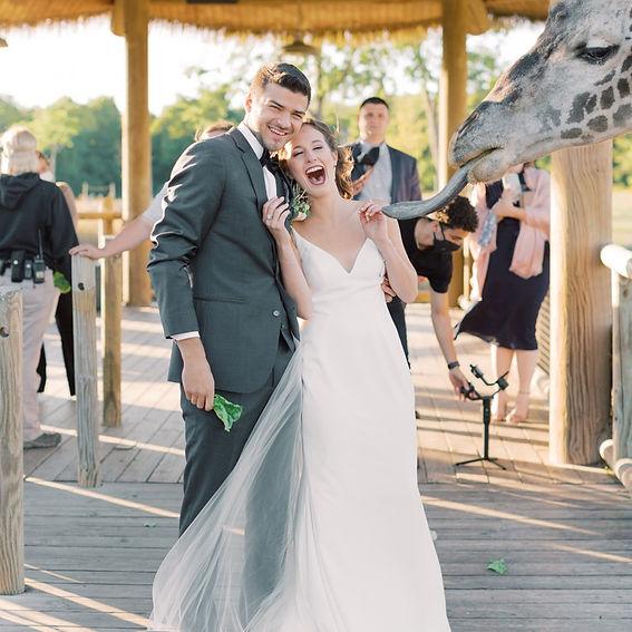 Wedding-Ali-Connor-Gallery-27_edited.jpg