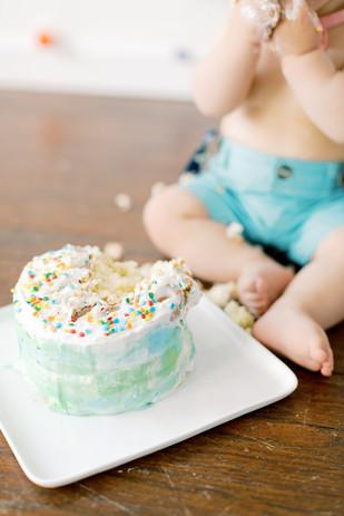 Family-Cake-Smash-Bartos-85_websize.jpg