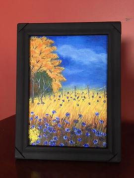 flower field.JPG