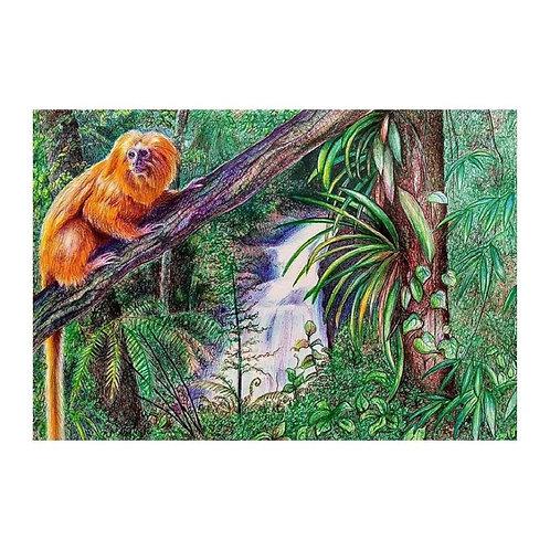 O mico-leão-dourado - Artista Plástica Birgitte Tummler