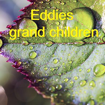 Eddies grand children