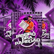 CD Pizeiro pra Paredao