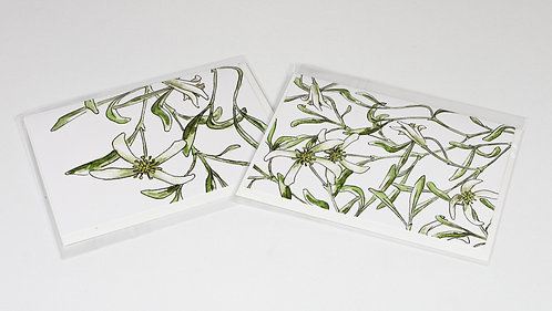 Gift cards 2 Pack - clematis