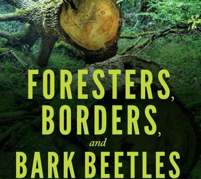 The Forest Colliding with Authoritarian and Communist Histories