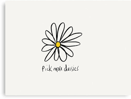 The significance of Daisies...