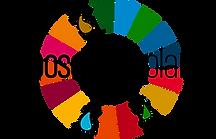 Logo Choose your planet sans fond.png