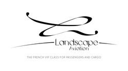 Carte de visite Landscape Aviation