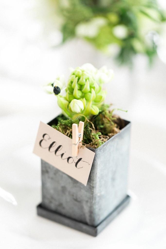Plant pot favour