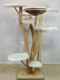Kratzbaum-Naturholz-7-1.jpg