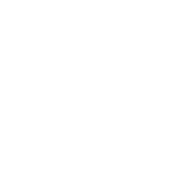 White Huguenot Cross.png