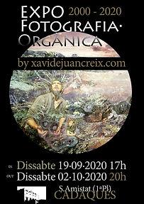 +_Internet_Poster_EXPO_20anys_d_art_Ogà