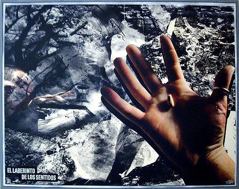 """""""El Laberinto de los Sentidos"""" (2009)"""