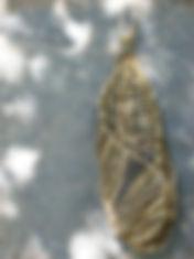 Scherloum-03-TeardropIvyBasket.JPG