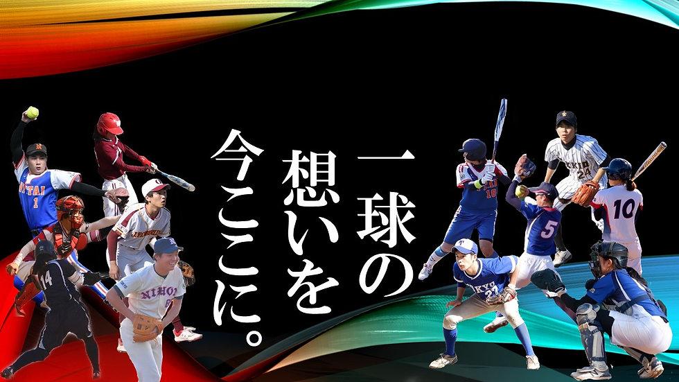 2020  東京都学連HP用 写真.jpg