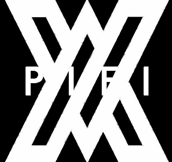 PIFILOGOTRANS.png