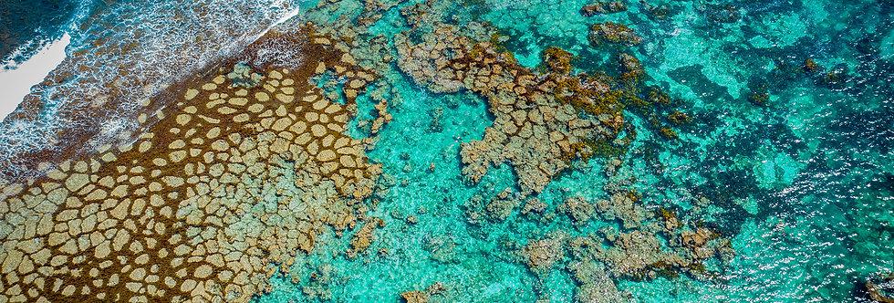 Turquoise Textures Wallpaper