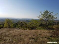 L'éveil de la Nature en Beaujolais !