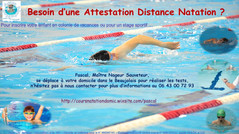Besoin d'une Attestation Distance Natation ?