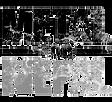 logo_bkgd_trans.png