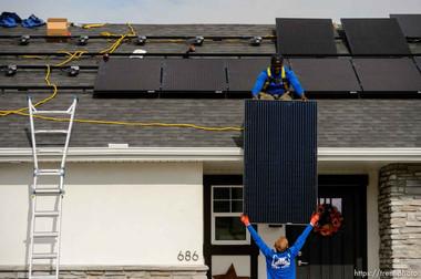 Elan Solar, SL Tribune.jpg