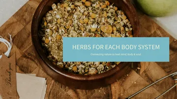Herbs for Different Body Systems