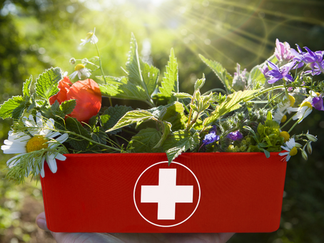 Natural Remedy First Aid Kit