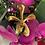 Thumbnail: RISIS orchid brooch