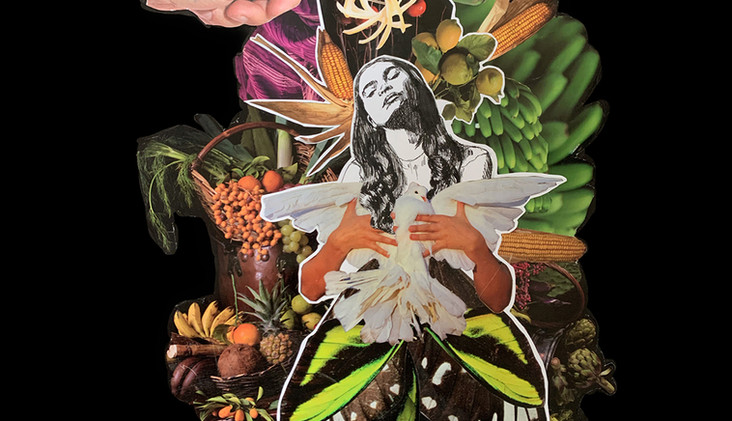 Nuestra Señora de las Palomas - Daniela Rivero