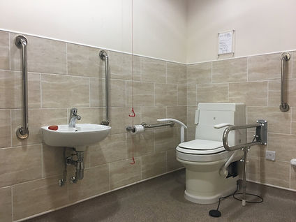 disabled toilet bathroom