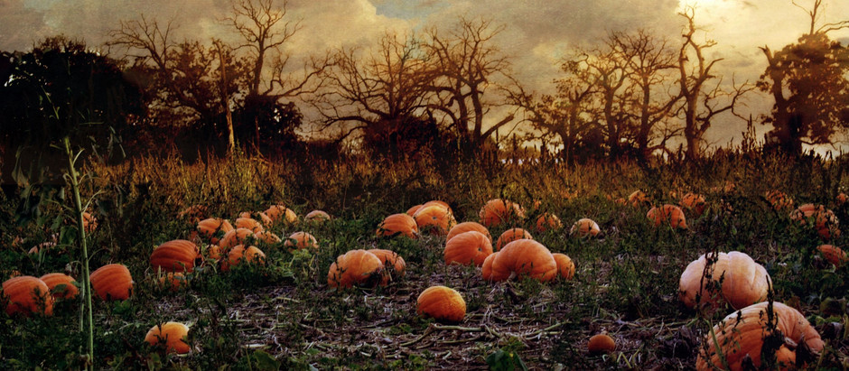 What's going on this Halloween in South Yorkshire?