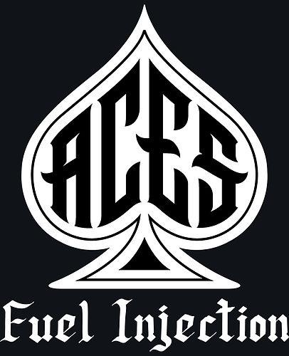 ACES Logo - White & Black 10.25sq gray.j