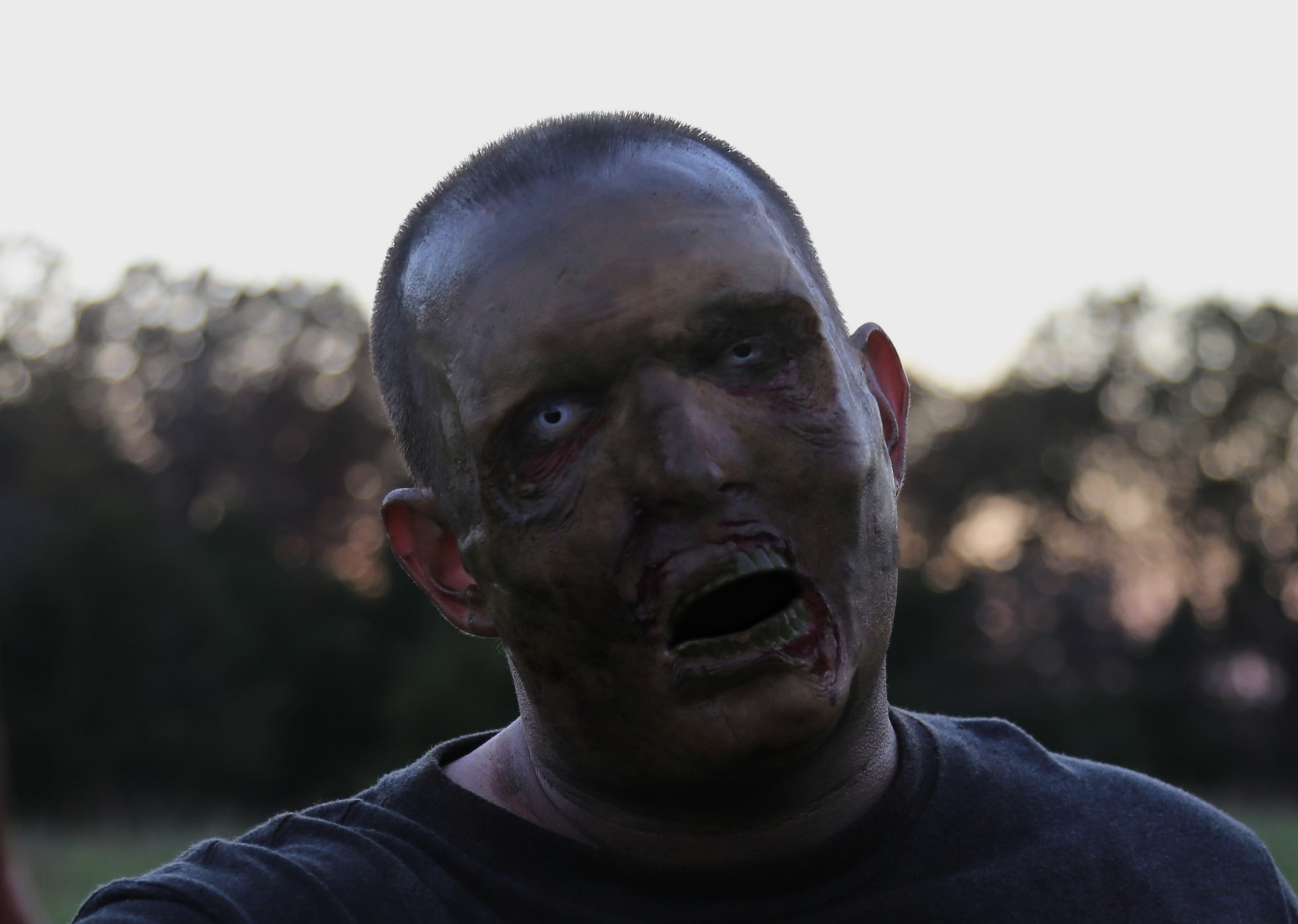 Mike Appel Zombie Pic 003 Revised Close Up