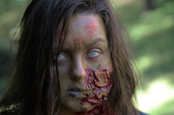 Stefani Zombie 002b_00000