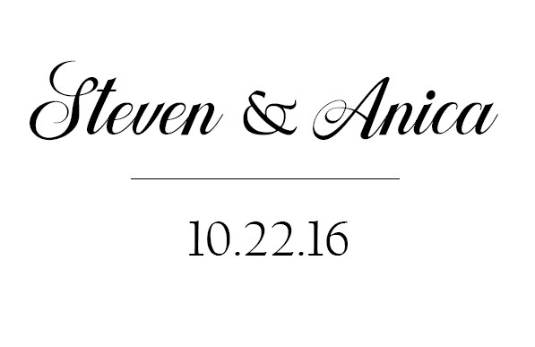 Anica and Steven's Wedding