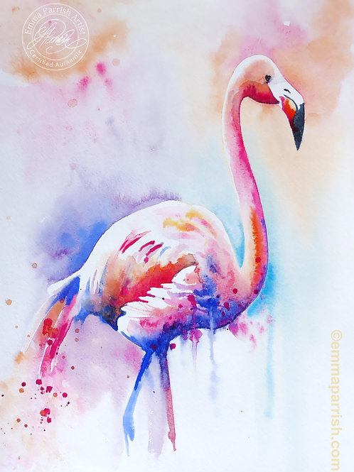 "Flamingo ""Delores"""