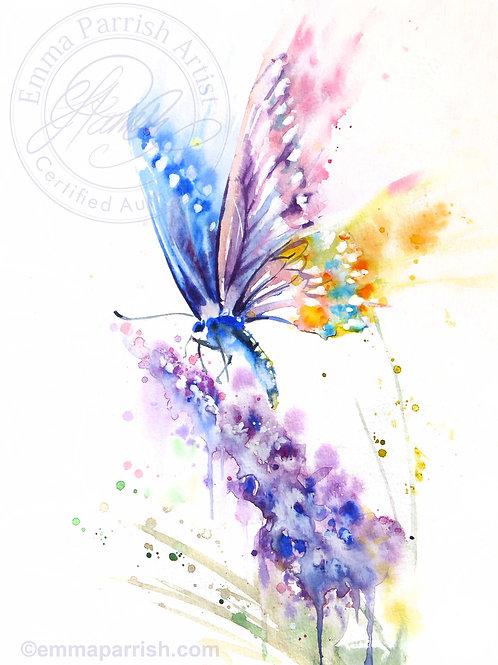 Butterfly on Purple Blooms
