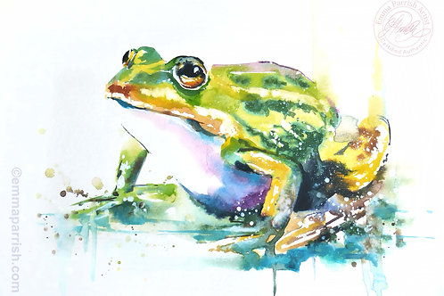 "Frog ""Uncle Harold"""