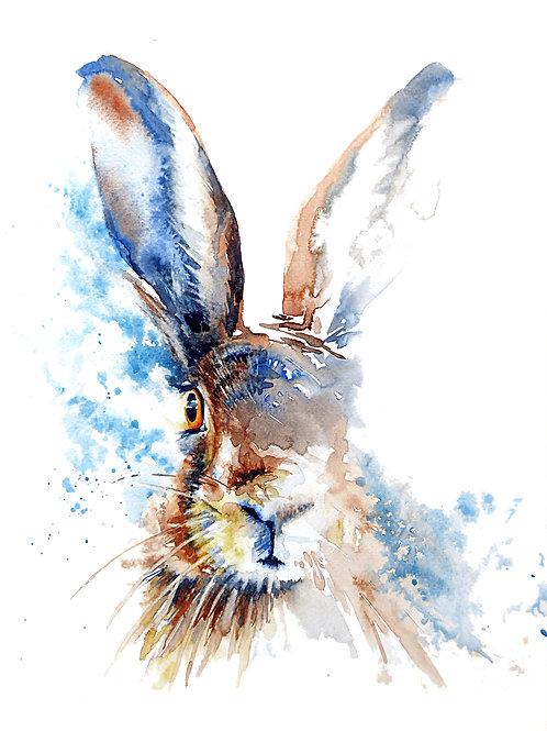 "Hare ""Barley"""