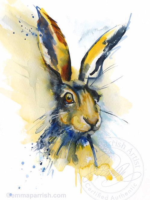 "Hare ""Parsley"""