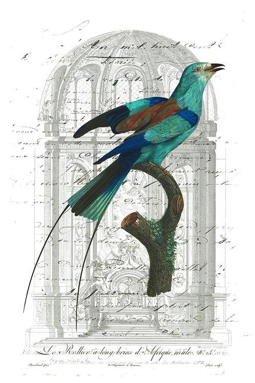 Bird Print-Number 14
