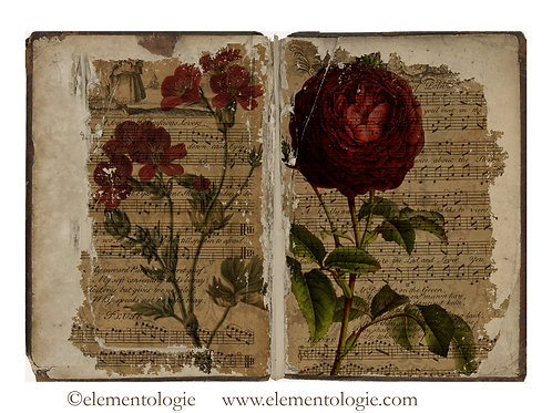 Botanical Junk Journal Double Page Sheet- No 123037-Digital Downl