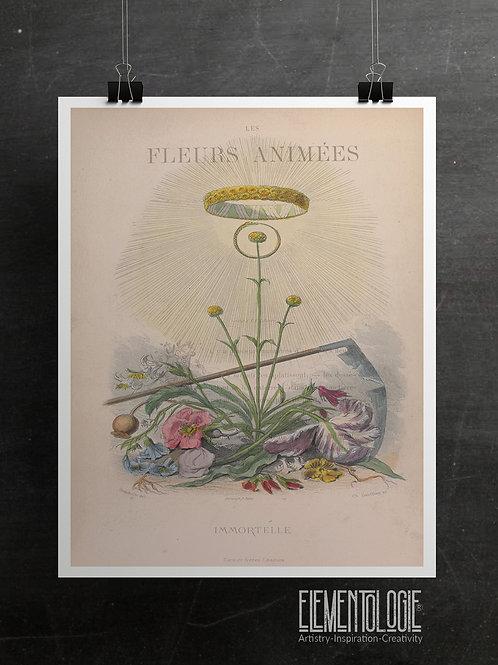 Botanical Printable print No 061