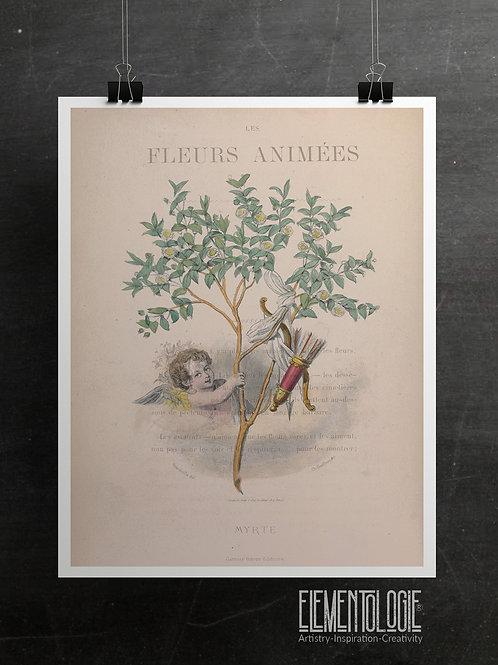 Botanical Printable print No 059